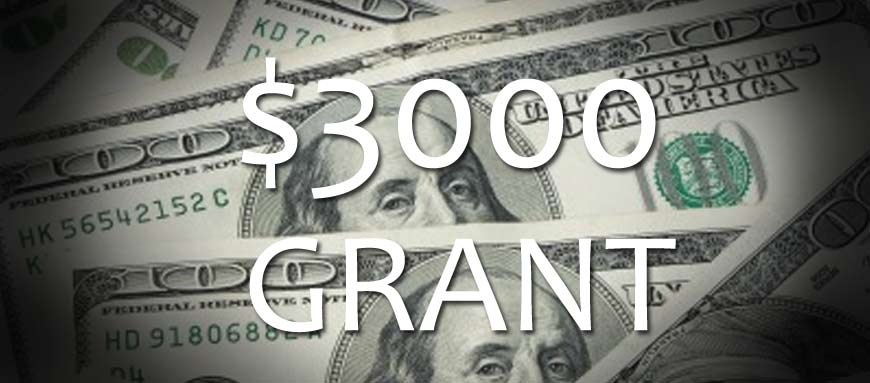 $3000 first time home buyer grant in Michigan.